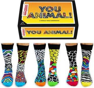 Box you animal (leverbaar vanaf 25-01-2021)